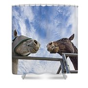 A Conversation Between Two Horses Shower Curtain