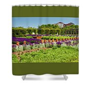 A Corridor Of Purple Sage Flowers And Stachys Lanata Sunlit Shower Curtain
