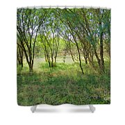 A Country Morning Shower Curtain