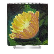 A Cup Of Sunlight Shower Curtain