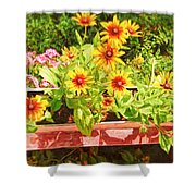 A Daisy Day Shower Curtain