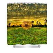 A Dandy Sunset Shower Curtain