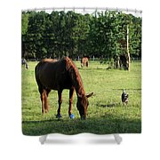 A Day At Chimney Field 1 Shower Curtain