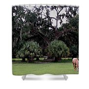 A Day At Chimney Field 2 Shower Curtain