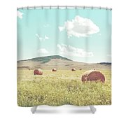 A Day In The Fields Shower Curtain