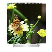 A Day Of Daisies Shower Curtain