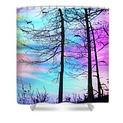 A Day With Dancing Lights Shower Curtain