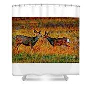 A Deer Kiss Shower Curtain