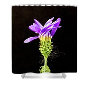 A Desert Flower Shower Curtain