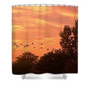 A Different Approach To Sunset Shower Curtain
