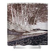 A Different World #1. Groove Of Trees Shower Curtain