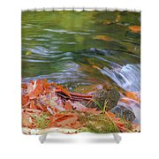 Flowing Water Fall Leaves Closeup Shower Curtain