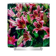 A Display Of Lilies Shower Curtain