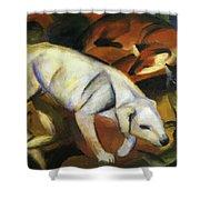 A Dog 1912 Shower Curtain