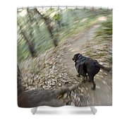 A Dog Backpacking On Pine Ridge Trail Shower Curtain