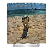 A Dog's Life Shower Curtain