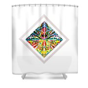 A Doorway Into The Light Shower Curtain
