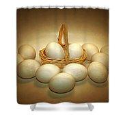 A Dozen Eggs II Shower Curtain