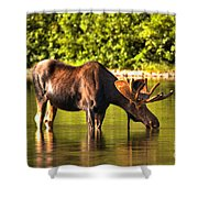 A Drink At Fishercap Shower Curtain