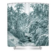 A Drink From Halls Brook Shower Curtain
