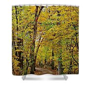 A Drive Through The Park Shower Curtain