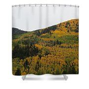 A Drive Throw The Forest In The Fall Shower Curtain