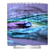 A Drop Of Royalty Shower Curtain