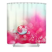 A Drop With Raspberrys And Cream Shower Curtain