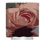 A Dusty Rose-d Shower Curtain