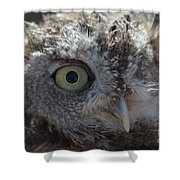 A Eye On You Shower Curtain