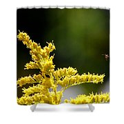 A Fairy Makes A Landing. Shower Curtain