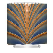 A Fan Of Art Deco Shower Curtain
