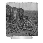 A Farmer Using A Cultivator  Shower Curtain