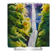 A Favorite Place Shower Curtain