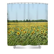 A Field Of Smiles Shower Curtain