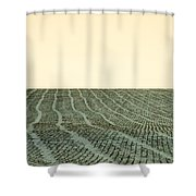 A Field Stitched Shower Curtain