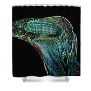 A Fish Called Poe 2 Shower Curtain
