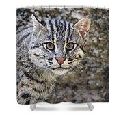 A Fishing Cat Portrait Shower Curtain