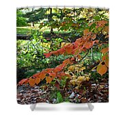 A Flame In The Forest Shower Curtain