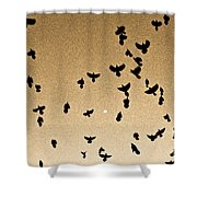A Flight Of Grackles Circling The Moon Shower Curtain