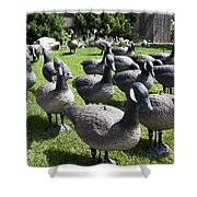 A Flock Of Decoys Shower Curtain