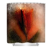 A Flower Is A Star Shower Curtain
