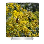 A Flower That Bees Prefer Shower Curtain by Guy Ricketts