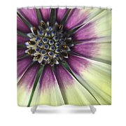 A Flower's Day Shower Curtain