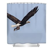 A Flying Squirrel Shower Curtain