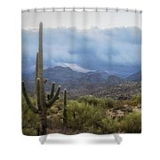 A Foggy Winter Morning  Shower Curtain