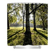 a Forest part 3 Shower Curtain
