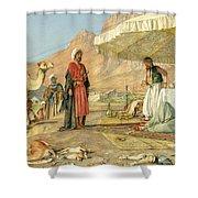 A Frank Encampment In The Desert Of Mount Sinai 1842 Shower Curtain