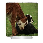A Friend Indeed Shower Curtain