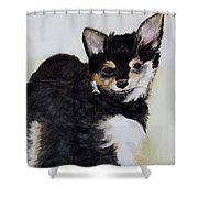 A Friend With A Smile  Shower Curtain